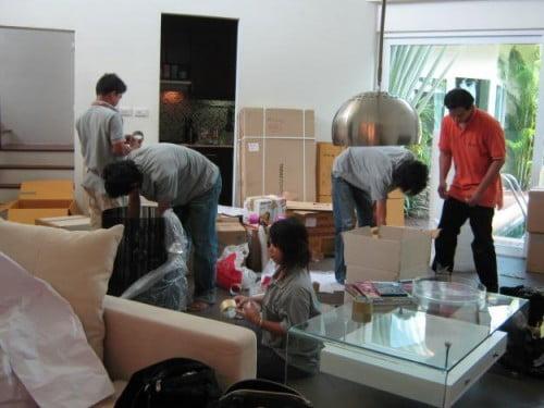 Kiến Vàng chuyển nhà tại Hà Nội